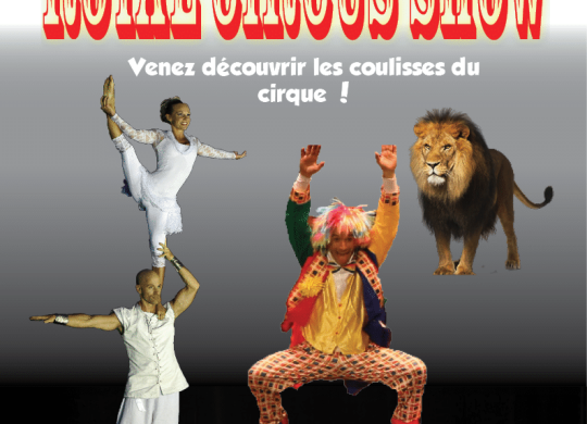 affiche Royal Circus Show2015